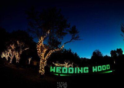 wedding-wood-0215-12